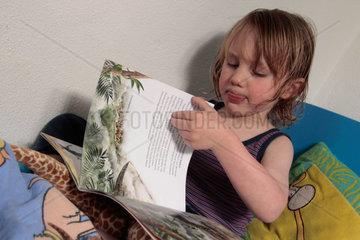 kleiner Junge  3 5 Jahre alt  liesst ein Bilderbuch im Bett (model released)