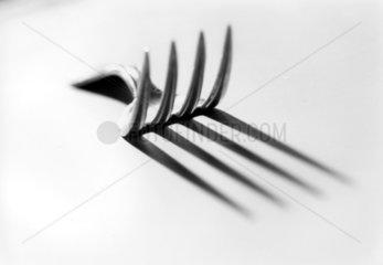 Gabel und ihr Schatten