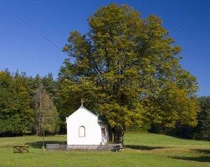 Deutschland  Bayern  Spessart  Heimbuchenthal  Kapelle Herrin der Berge