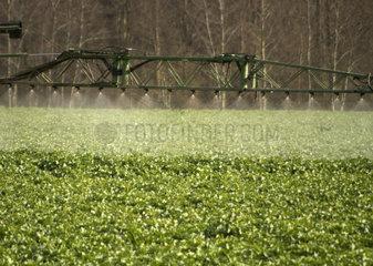 Landwirtschaft - Felder werden bewaessert