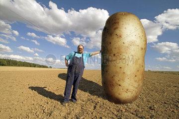 dicker Bauer lehnt an grosser Kartoffel - Gentechnik