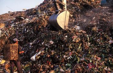 Jakarta  Indonesien  Muellsammler auf der Muelldeponie Bantar Gebang in Bekasi