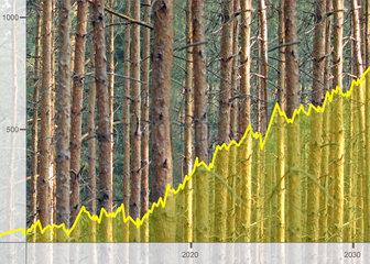 Aktienkurse Rohstoffe Holz