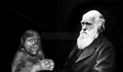 Charles Darwin ( 1809 - 1882 ) mit Affe