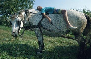 Maedchen ruht sich auf Pferd auf