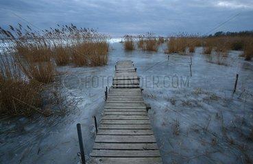 Winterlandschaft - Steg an eingefrorenem See