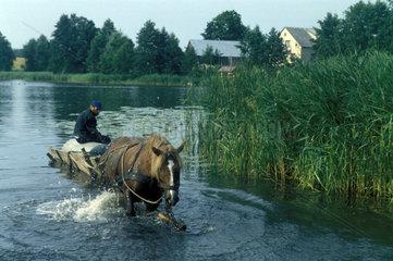 Kutsche faehrt durch See