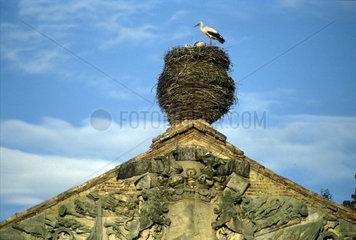 Storchennest auf dem Dach eines Schlosses