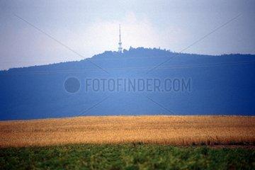 Berg erhebt sich hinter Getreidefeld