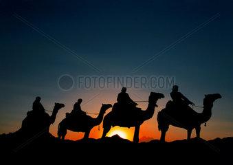 Aegypten: Silhhouette von Kamelreitern in der Arabischen Wueste