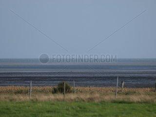 Das Wattenmeer an der Nordsee