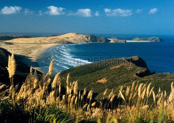 Neuseeland - Northland: Ninety Mile Beach