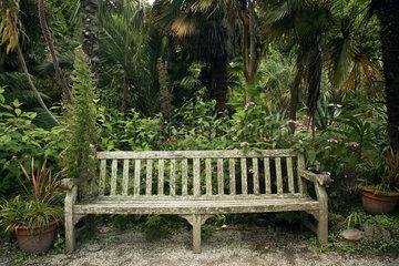 GB Trebah Gardens - Parkbank