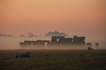GB Stonehenge - Morgenstimmung