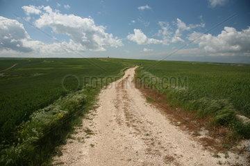 Landschaft am Jakobsweg - Camino de Santiago