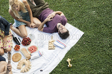 Summer picnic in the park with friends