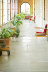 Sunroom with chairs and potted plants