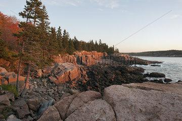 Rocky shore  Acadia National Park  Maine  USA