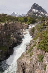 Waterfall in Glacier National Park  Montana  USA