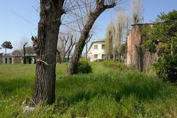 Verwilderter Park in Marina Di Carrara