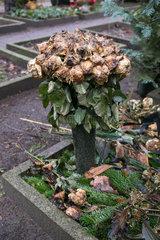 Berlin  Deutschland  verwelkter Strauss Rosen an einem Grab