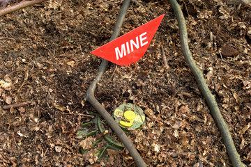 Landminen suchen  Demonstration von Help e.V.