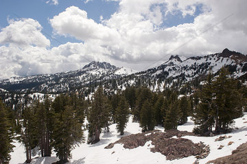 Snow-capped mountains and evergreen trees in Lassen Volcanic National Park  California  USA