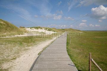 Insel Amrum  Wittduen  Deutschland  Duenenlandschaft auf Amrum