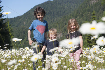 Children in field of daisies