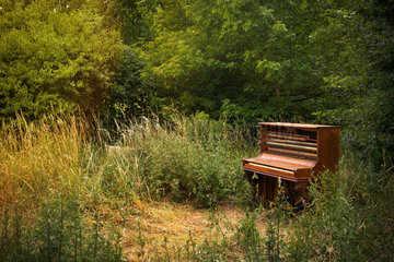 Berlin  Deutschland - Altes im Park abgestelltes Klavier