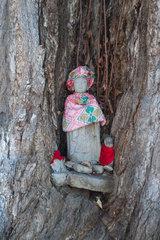 Takayama  Japan  Jizo-Statue in einem alten Gingkobaum