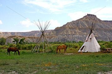 Pferde und Indianerzelte