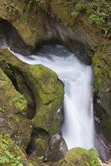 Small waterfall in North Cascades National Park  Washington  USA