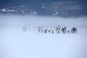 Reischach  Italien  Winterlandschaft
