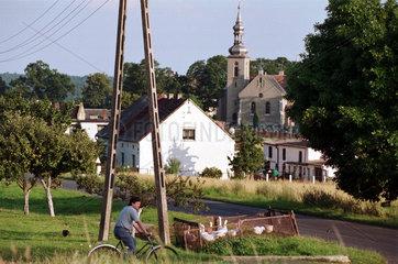Polen  Fahrradfahrer und Gaense