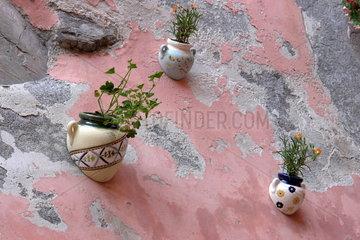 Rosa Hauswand mit Blumenschmuck