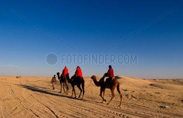 Tourists on camel ride in Douz in Sahara Desert in Tunisia Africa