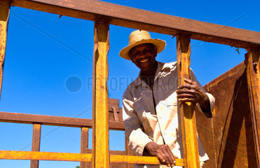 Black man in truck with wood in small village of Australia Cuba farm country