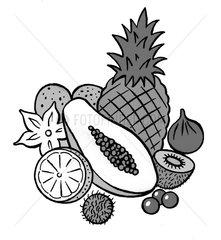 Exotische Fruechte - Serie Symbole