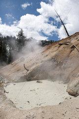 Boiling mudpot in Lassen Volcanic National Park  California  USA
