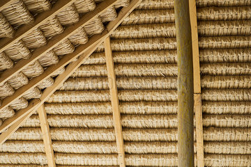 Underside of thatched roof
