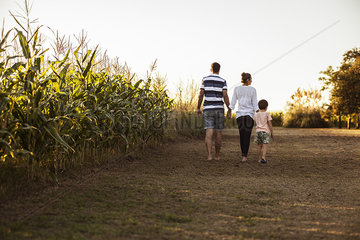 Family with one child walking along dirt road next to cornfield