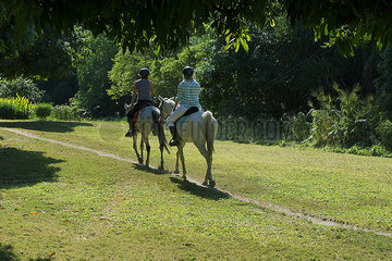 Tourists riding horses through countryside