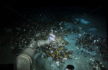 CHINA-SOUTH CHINA SEA-DEEP SEA RESEARCH (CN)