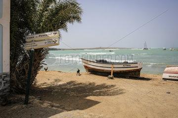 Fischerboote am alten Fischerhafen  Praia de Diante  Sal Rei  Boa Vista  Kapverden