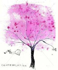 cherry blossoms Kirschblueten