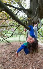 Maedchen klettert in einem Baum