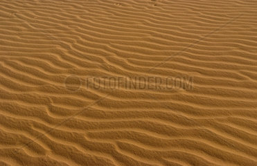 Ripples in sand in Sahara Desert with sand everywhere near Tozeur in Tunisia Africa