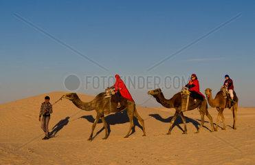 Tourists on camel ride adventure in Douz Sahara Desert in Tunisia Africa