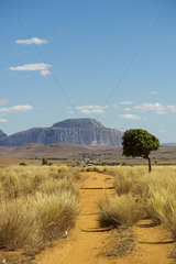 Dirt road with Bishop's Hat Rock in the background  Madagascar